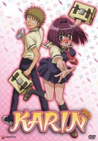Karin Poster