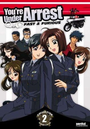 Taiho Shichau zo (Season 2) Poster