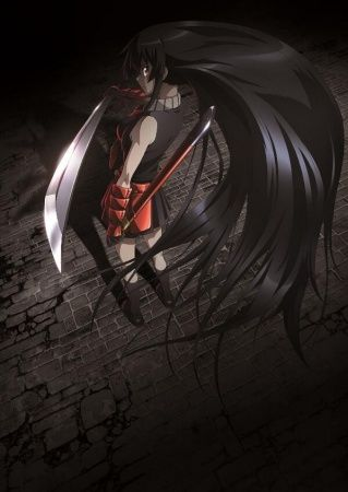 Akame ga Kill! Theater Poster